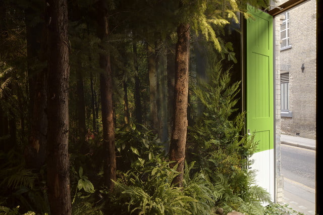 pantone airbnb outside in greenery 082