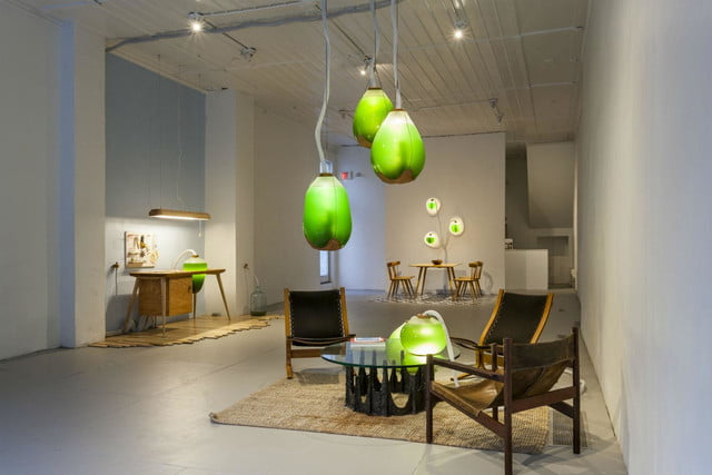 microalgae lamps can light your home and are edible algae lamp 05