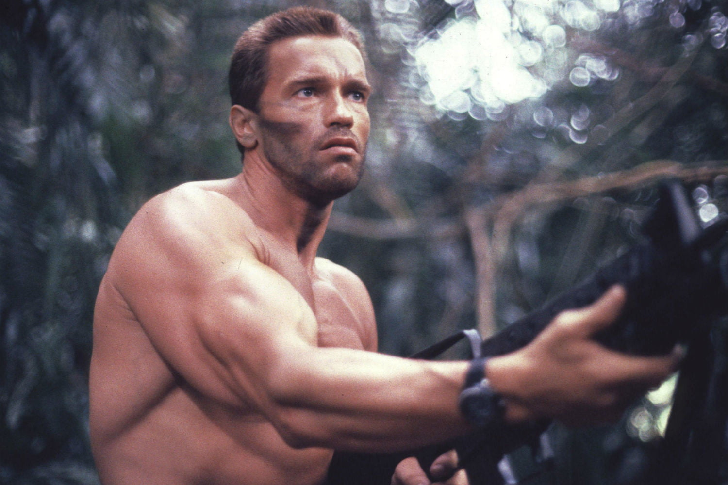 schwarzenegger might be old arnold in new predator movie digital