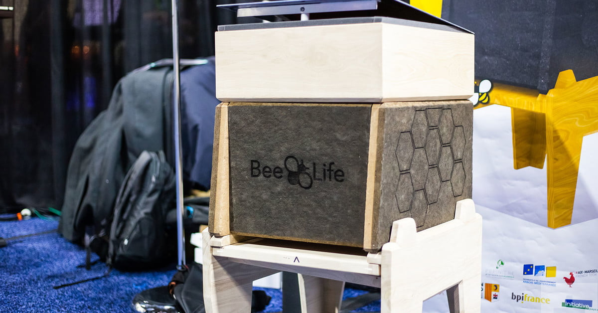 Beehive That Protects Bees From Parasitic Mites Debuts At