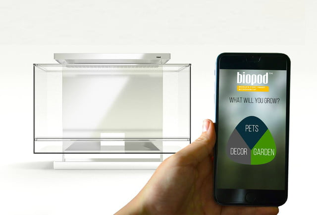 the biopod is a microhabitat thats rainforest on your countertop app