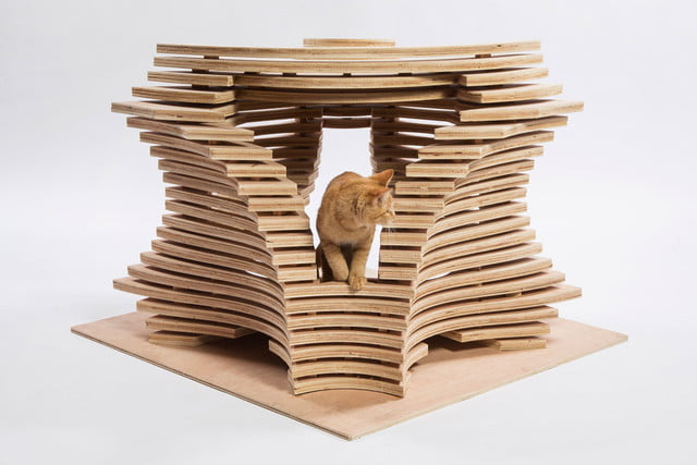 architects for animals design amazing cat houses callisonrtkl photo credit meghan bob photography