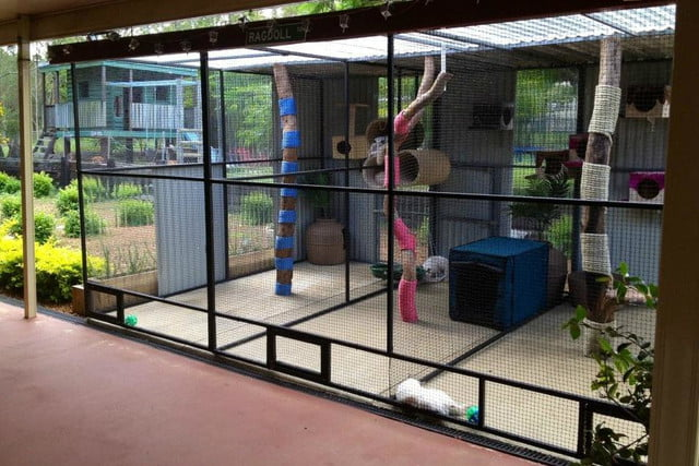 furniture and homes that are made for cat people nets catio