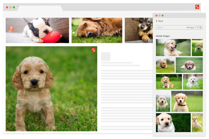 shutterstock showcase new ai search tools chrome  hp2