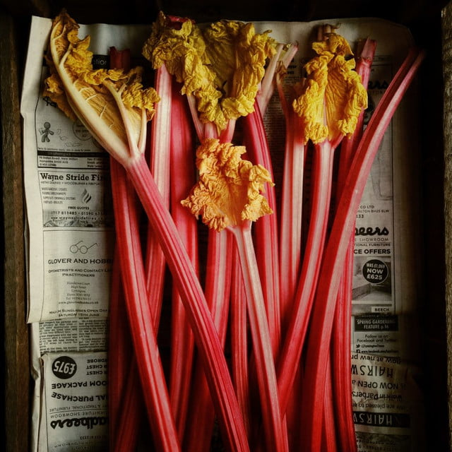 2016 International iPhone Photography Awards - Food - First Place - Andrew Montgomery