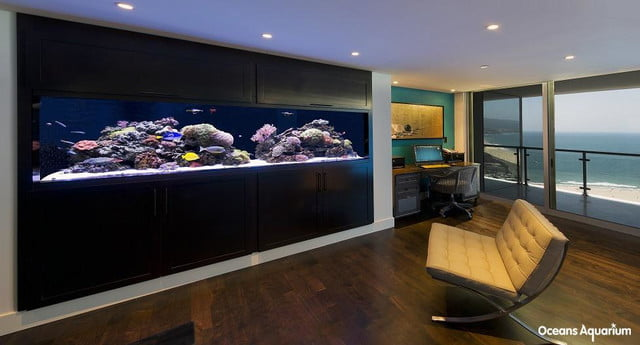 homes with their own shark tanks 1