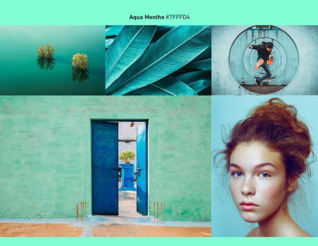 2020 photography trends tnreds aqua menthe