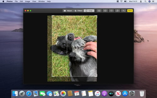 How to Crop a Photo in Windows and MacOS | Paint, Photos