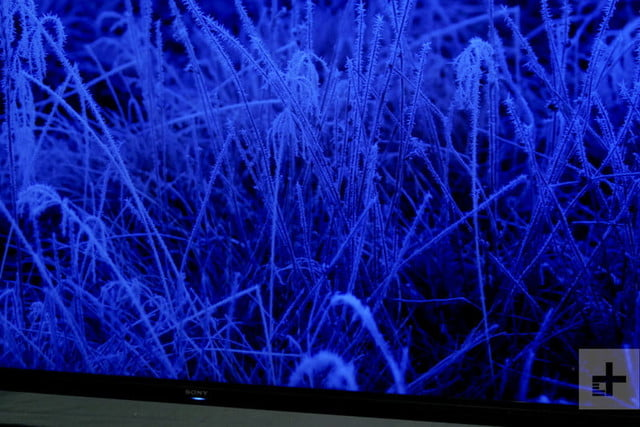Sony Z9G 8K HDR LED TV Hands-On Review: Big, Bold, Beautiful