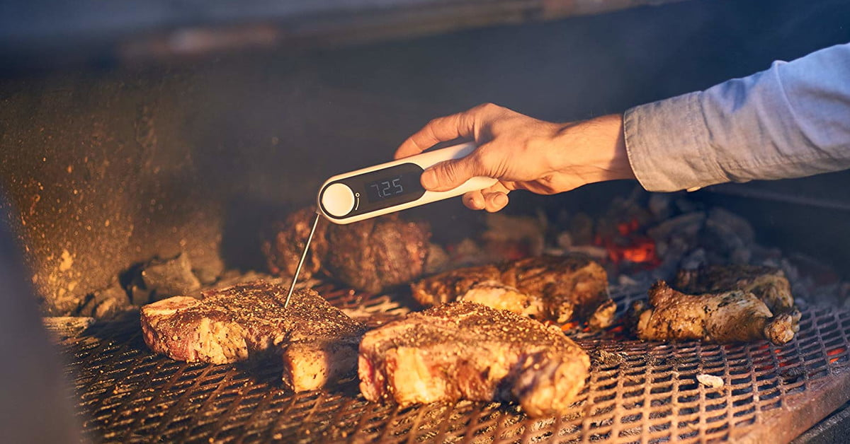 Best Meat Thermometers for 2020 | Digital Trends