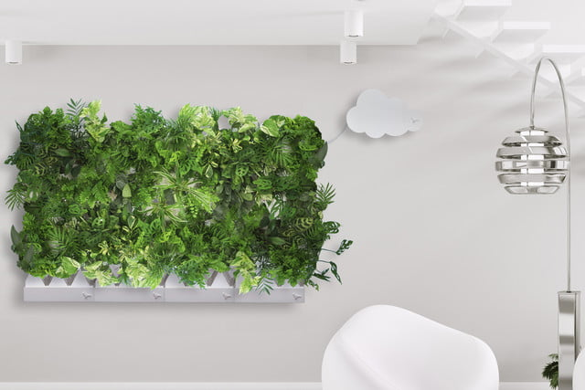 plug and plant is an easy to grow vertical garden green 006