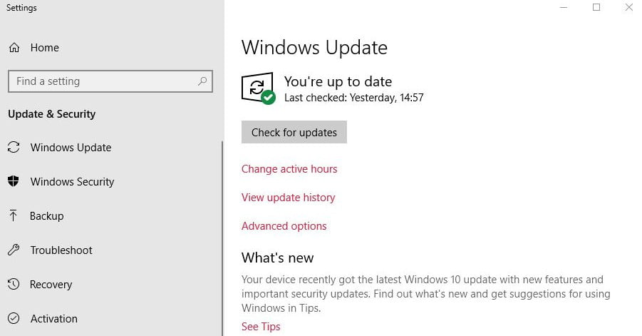 Hitting 'Check for Updates' in Windows 10 Opts You into Beta