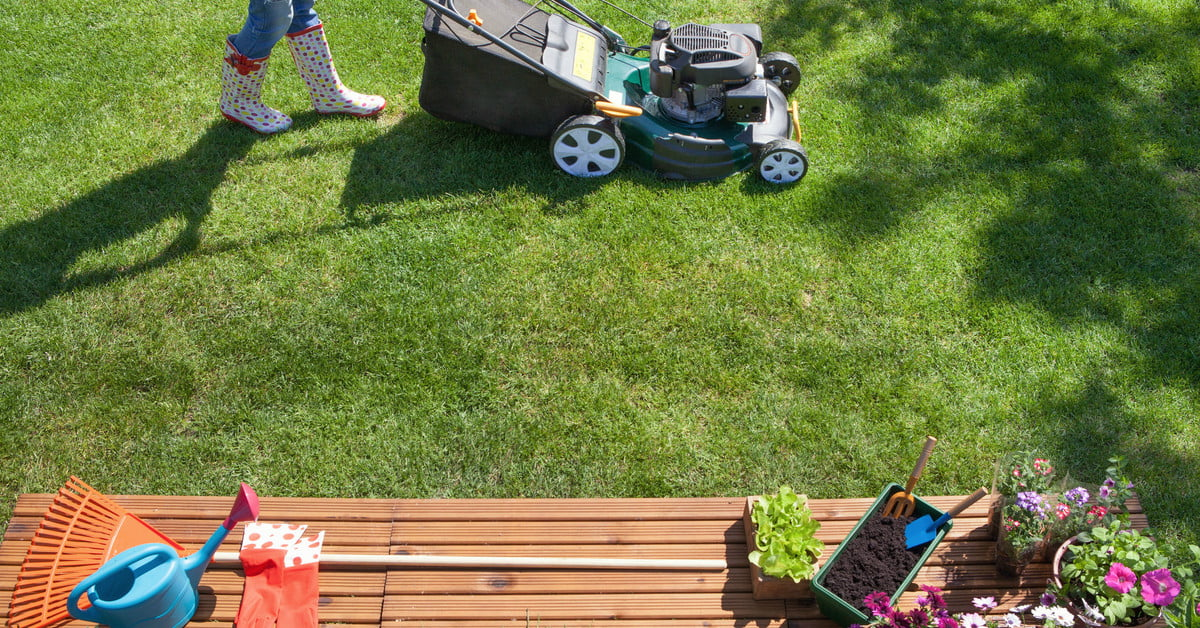 early spring lawn care tips - 1200×628