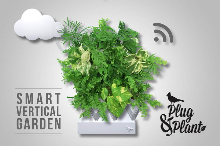 Plug & Plant Is an Easy to Grow Vertical Garden
