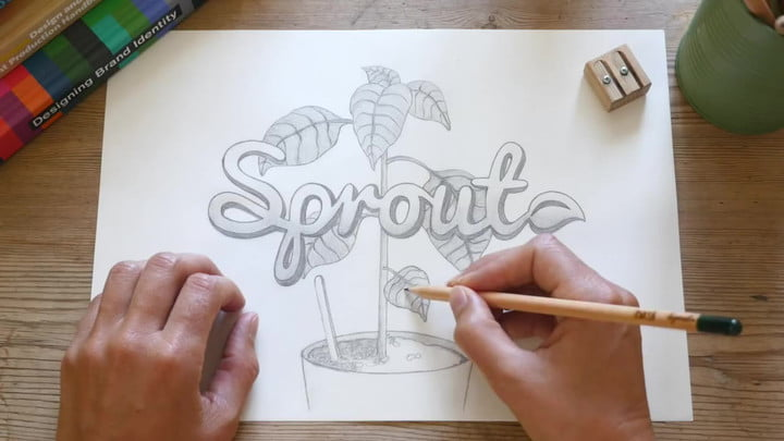 Sprout World Pencils Grow Into Plants