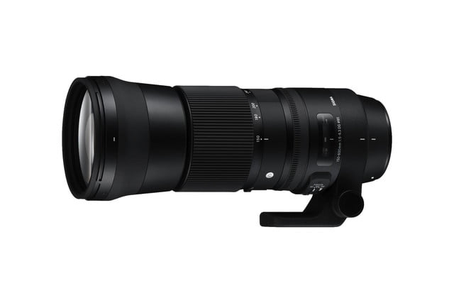 sigmas new telephoto zoom lenses will turn wildlife photographer sigma 150 600 c 2
