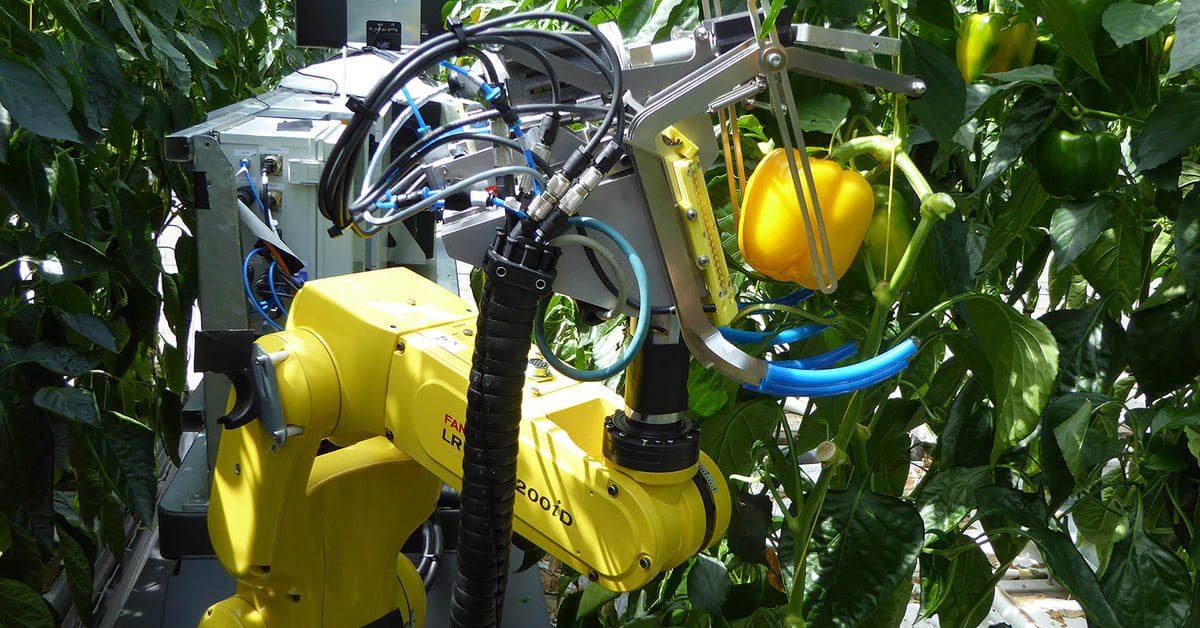Sweeper is an autonomous agribot that locates and picks ripe fruit