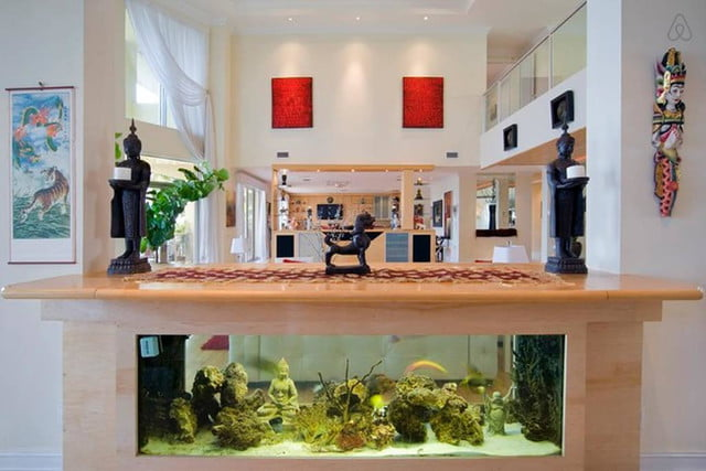 homes with their own shark tanks villa deep blue 13
